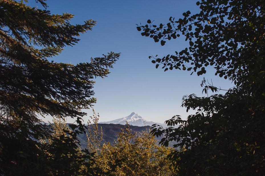 husum-highlands-gorge-wedding-029