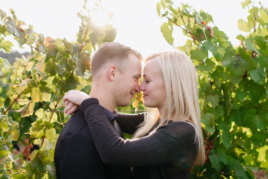 090 oregon vineyard engagement